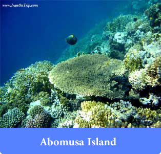 Abomusa Island - Islands of Iran