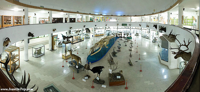 Natural History and Technology Museum ln Shiraz Iran - Museums of Iran