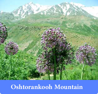 Oshtoran Kooh - Mountains of Iran